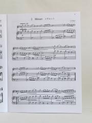 Suzuki_flute_V2_AC_C