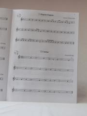 Suzuki_flute_V1_CD_C